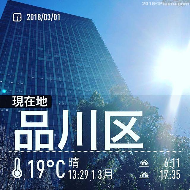 久しぶりに大崎に来てます。しかし暑い。