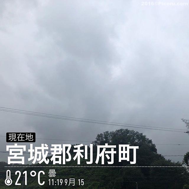 うーむ天気悪い。